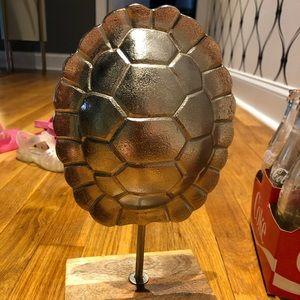 NWT Turtle Shell 🐢
